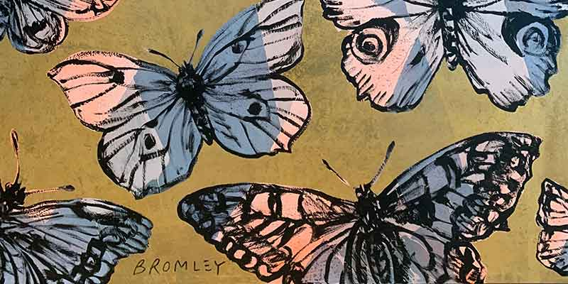 Will Bromley Butterflies