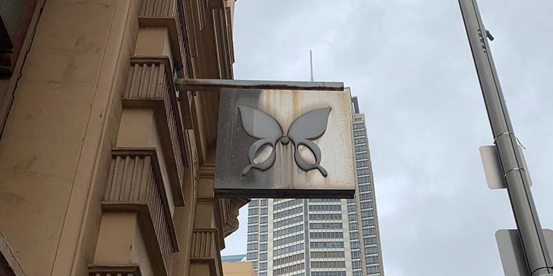 Butterfly logo the universe has your back
