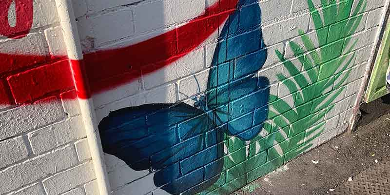 Graffiti butterfly universe has your back