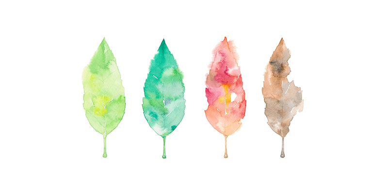 Water paint leaves